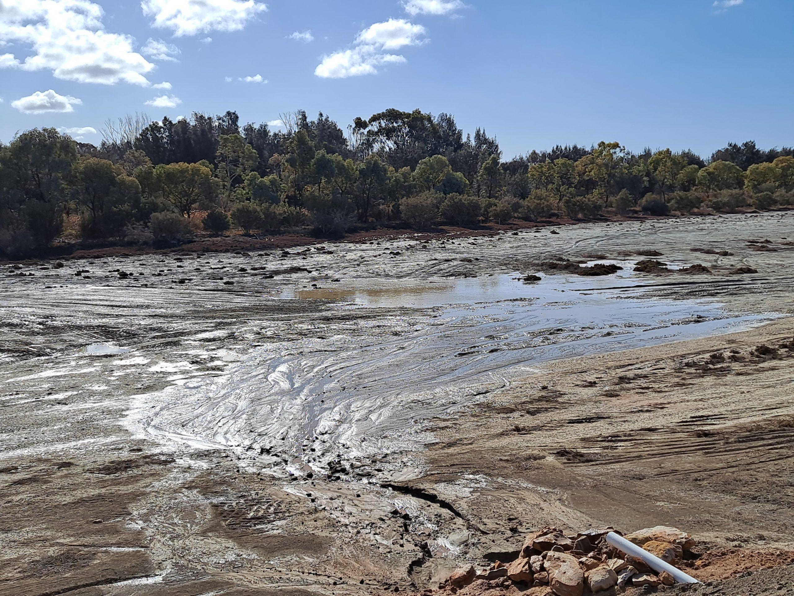 Ral Ral Floodplain new watering site
